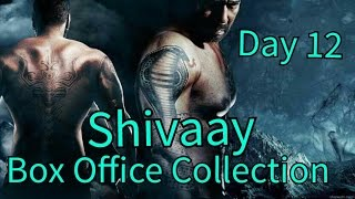 Shivaay Box Office Collection Day 12