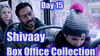 Shivaay Box Office Collection Day 15