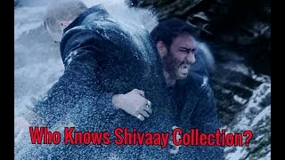 Who Knows The Box Office Collection Of Shivaay?