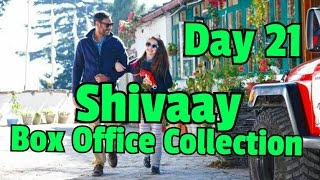 Shivaay Box Office Collection Day 21