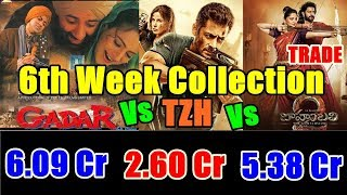 Tiger Zinda Hai Vs Baahubali 2 Vs Gadar 6th Week Collection Comparison