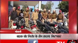 Biker gang busted