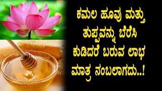 ಕಮಲದ ಹೂವು ಮತ್ತು ಜೇನು ತುಪ್ಪವನ್ನು ಸೇರಿಸಿ ಸೇವಿಸಿದರೆ ಬರುವ ಲಾಭ | Kannada Health Tips