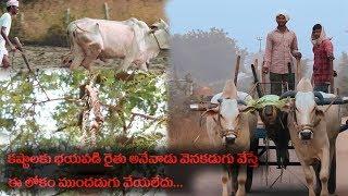 Heart Touching Story Of Indian Farmer 'Karshaka' Short Film | Top Telugu Tv