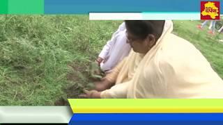 janamashtmi News - जन्माष्टमी के उपलक्ष्य में यमुना किनारे लगाए गए सैंकड़ों पौधे || Delhi Darpan Tv