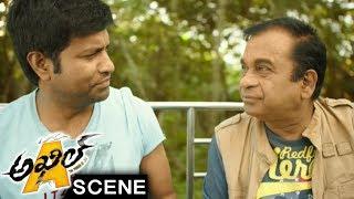 Sayesha Argues With Brahmanandam - Comedy Scene - Akhil Movie Scenes