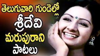 Sridevi Evergreen Songs - Sridevi Hit Songs - Sridevi Telugu Songs - Bhavani HD Movies
