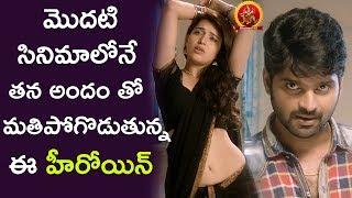 Chitra Shukla Tempting Sree Vishnu    Latest Telugu Movie Scenes    2017 Telugu Movies