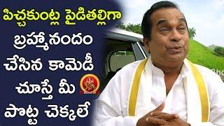 Brahmanandam as Pichakuntla Paidithalli || Brahmanandam Comedy Scenes || Telugu Comedy
