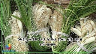 How can garlic help to improve stamina