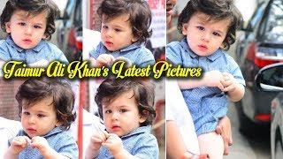 Taimur Ali Khan's Latest Pictures || Taimur Ali Khan Looks so Adorable