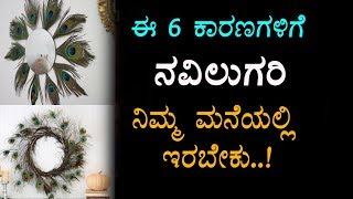 6 Vastu Tips Significance Of Peacock Feather | Amazing Tips in Kannada | Top Kannada TV