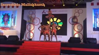 India's Got Talent & Georgia Got Talent Finalist 2016 Incredible Mallakhamb performance