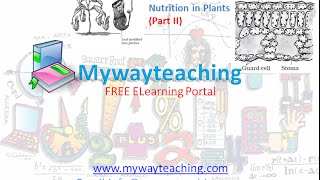 Science Class 7 Chapter 1 Part 2|Nutrition in plant|Science  Chapter 1 for Class 7|