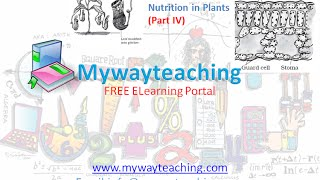 Science Class 7 Chapter 1 Part 4|Nutrition in plant|Science  Chapter 1 for Class 7|