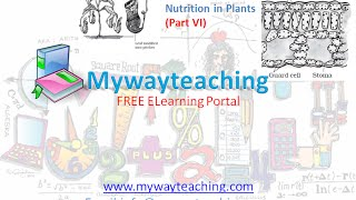 Science Class 7 Chapter 1 Part 6|Nutrition in plant|Science  Chapter 1 for Class 7|
