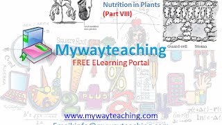 Science Class 7 Chapter 1 Part 8|Nutrition in plant|Science  Chapter 1 for Class 7|
