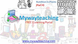 Science Class 7 Chapter 1 Part 10|Nutrition in plant|Science  Chapter 1 for Class 7|