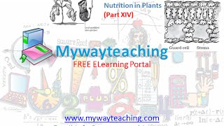 Science Class 7 Chapter 1 Part 14|Nutrition in plant|