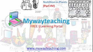 Science Class 7 Chapter 1 Part 15|Nutrition in plant|