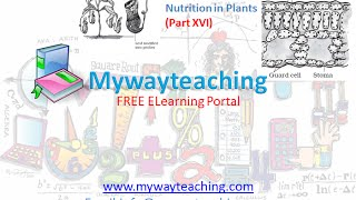 Science Class 7 Chapter 1 Part 16|Nutrition in plant|