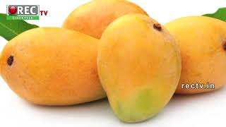 Best Anti Ageing Mango Face Pack ll Best beauty tips ll Skin Care tips in telugu