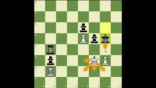Chess Endgame #3 How to use Triangularization Tactics
