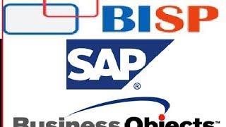 SAP Business Objects BI Developer Track Introduction