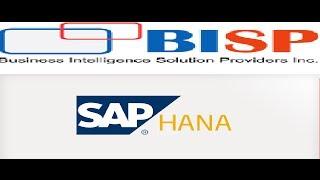 An Introduction to SAP HANA