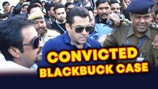 Salman Khan CONVICTED In Blackbuck Case By Jodhpur Court