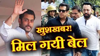 Salman Khan GETS BAIL | Tiger Walks Free | Big Win For Salman FANS