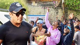 Fans Burst Crackers And Throws Flowers Outside Jodhpur Jail | Salman Khan GETS BAIL