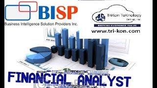 Tableau Balance Sheet Report  Net Working Capital