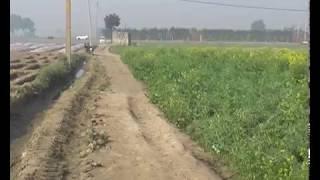 Delhi Farming 1