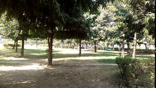 Japani Park Rohini Delhi | Sawrn Jyanti Park 7