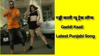गड्डी काली न्यू ट्रेक लॉन्च : Gaddi Kaali | Analog Records | latest Punjabi Song