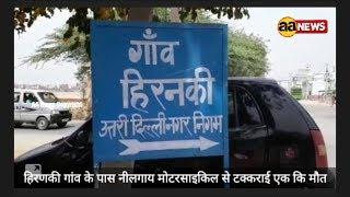 Neelgay aur bike me takkar. Hiranky Alipur Bakhtawarpur road
