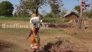 Watch How 12 Tribal Lady started Green Revolution In Keonjhar