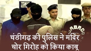 Chandigarh - Theft in temple, thief gang arrest