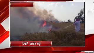 खन्ना - गेहूँ  की फसल में लगी आग - tv24