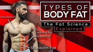 4 TYPES OF BODYFAT YOU MUST KNOW (The Fat Science Explained)
