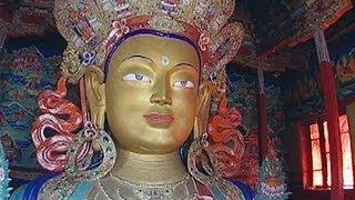 The Way of Buddha