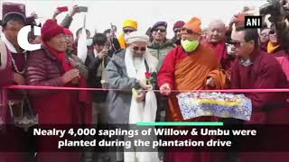 Massive tree plantation drive launched in Leh