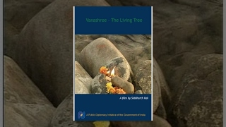 Vanashree - The Living Tree
