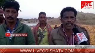 Nabarangpur Corn Issue