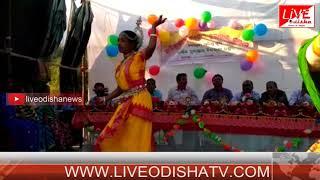 adiwasi bidyapitha annual function in patrapur