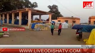 Sonepur farmer problem
