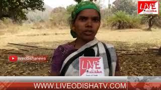 Special Report : Kandhamal Gudmaha firing issue....