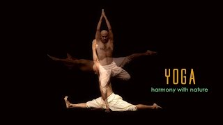 Yoga: Harmony with Nature - Chinese