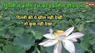 #Yamuna Biodiversity Park  Lake Jagtpur Delhi  Wajirabad #YBP Delhi
